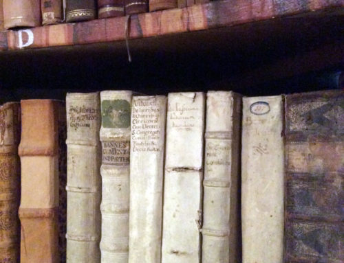 Fritsch Literatur